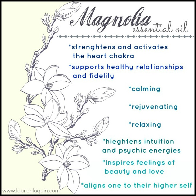 Healing With Magnolia Trees White Light