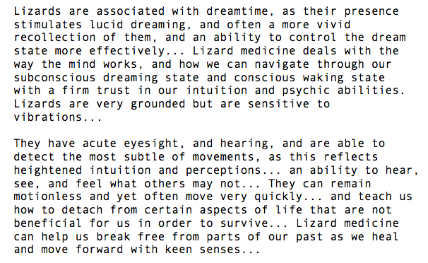 lucid dream with clarity and purpose - lizard medicine by Lauren Luquin