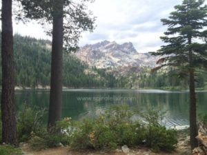 Peace and Transformation with Lake Medicine